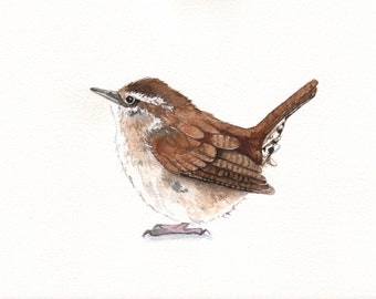 Wren painting - W073- bird wildlife art nature  Print of watercolor painting 5 by 7 print wall art print - bird art print - watercolor print