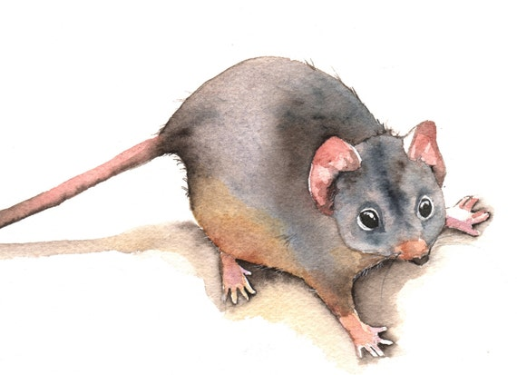 Mouse painting - M016- print of watercolor painting- 5 by 7 print