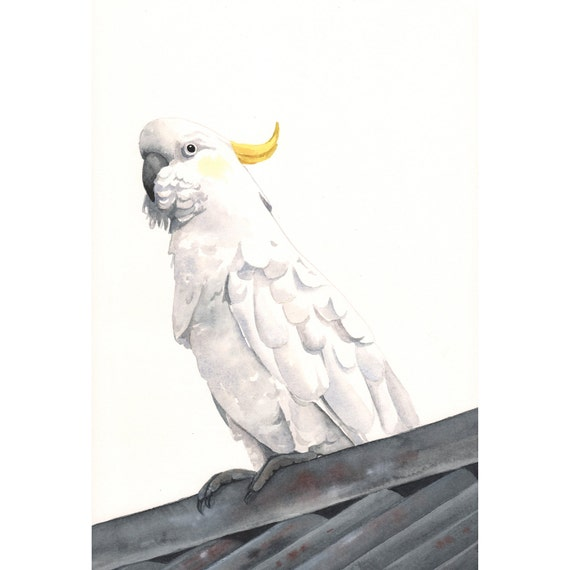 Cockatoo Painting  ORIGINAL watercolor painting - Art -