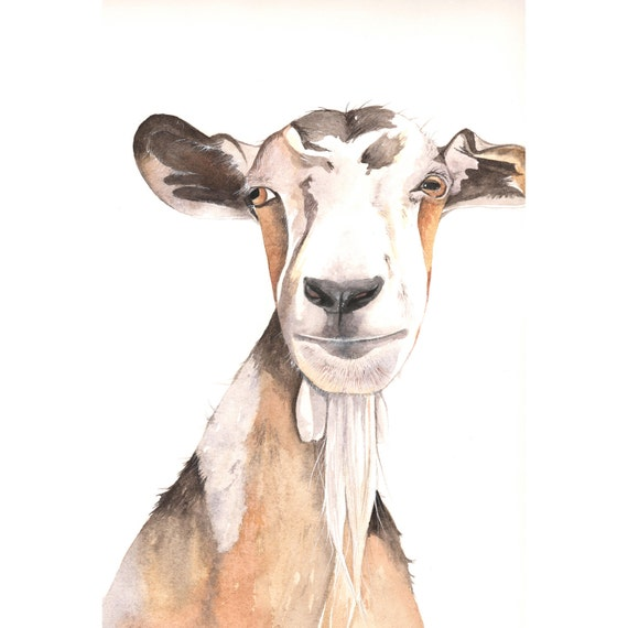 Goat painting  - print of watercolor painting 5 by 7 print