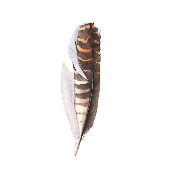 Feather Painting Brown - Original Watercolor Painting