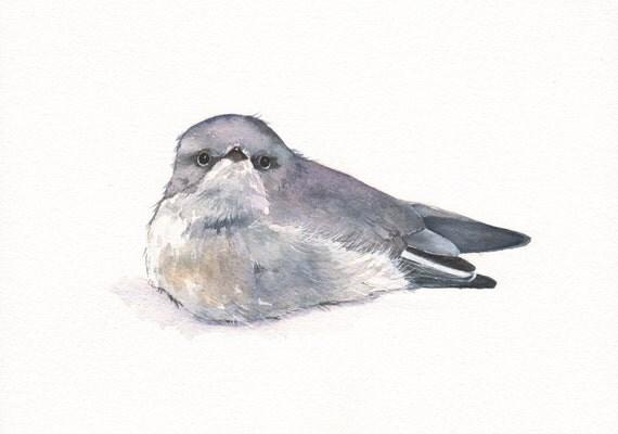 Bird Painting - B047- ORIGINAL watercolor painting