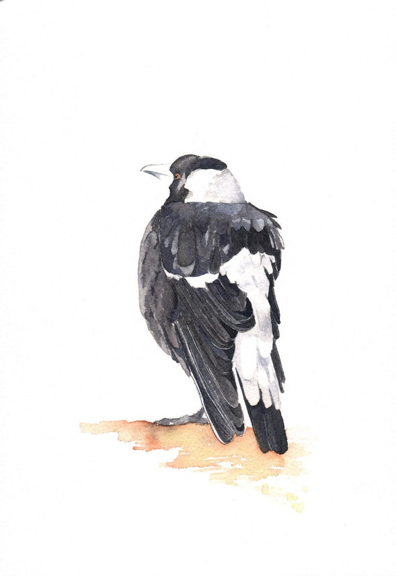 Magpie Painting - ORIGINAL watercolor painting