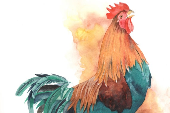 Rooster painting watercolor  R074- BIRD print of watercolor painting - 5 by 7 print wall art print - bird art print