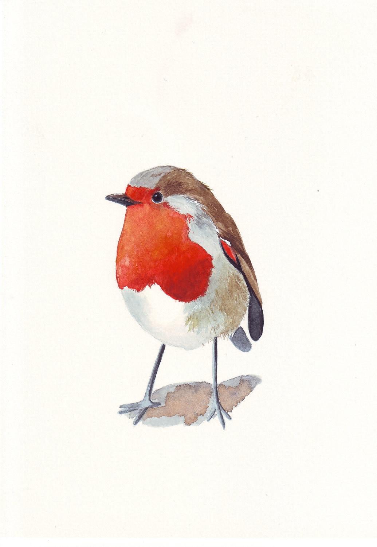 Robin Painting Original Watercolor Bird Painting