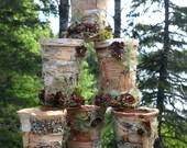 vases wedding centerpiece birch patchwork design set of 6
