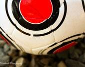 Soccer Ball 8x12 Print