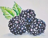 "Buy 1 Get 1 free - ""Blackberries"" 5x7 - Watercolor Painting - Print"