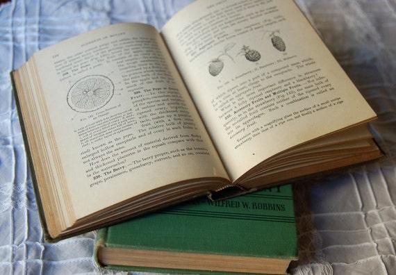 Three 19th-20th Century Botany Textbooks