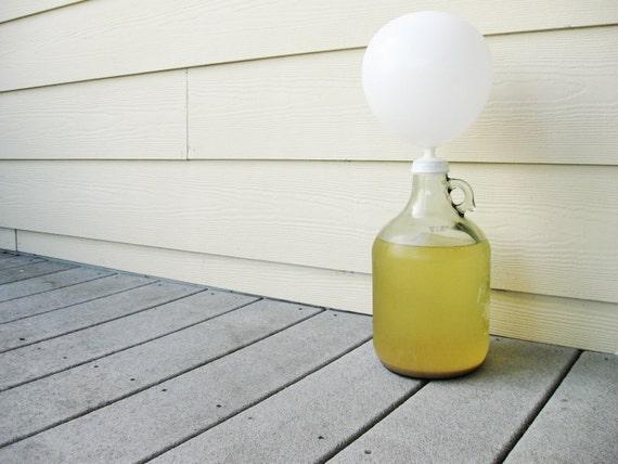 GINGER ALE Homebrew Soda Kit - DIY Home Brew Gift Set with Mason Jar Mug