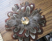 CUSTOM ORDER for Calley - 4 Pheasant Feather Hair Clips