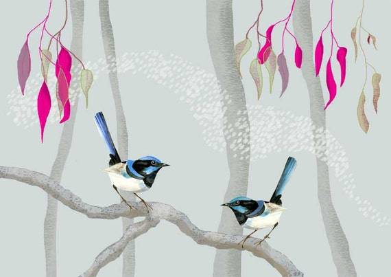 Australian birds, blue fairy wrens, Giclee illustration Print, Animal painting
