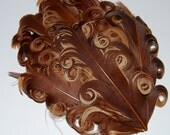 Curly Feather Pad - Two Tone Brown FP177 - (1 piece)