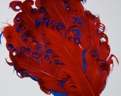 Curly Feather Pad - Two Tone Red on Royal Blue FP187 - (1 piece)