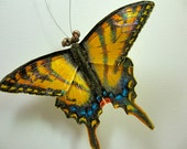 Tiger Swallowtail butterfly brooch