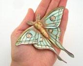 Spanish Moon moth leather brooch