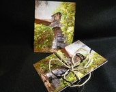 The Forgotten Memory Postcards - Fine Art Photography - Standard Size - Set of 12 Cards