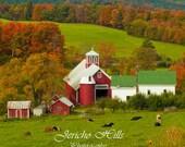 Bogie Mountain Farm  E. Ryegate VT