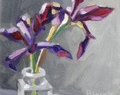 Two Purple Siberian Iris in a Glass Bottle