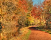 Autumn Towpath and Canal Landscape Photograph Trees Fall Foliage Rust Color Photography Zen Nature Art Print  Bucks County Pennsylvania