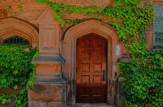 Ivy and Door, Princeton University, Color Photograph, Ivy League, Rustic, School, Fine Art Photograph, Green, Brown, HDR, Home Decor