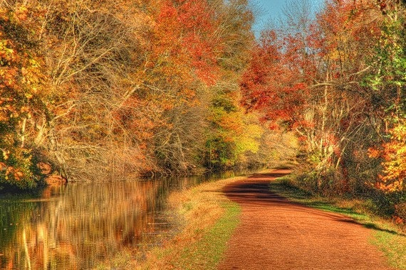 Autumn towpath and canal landscape photograph trees fall for Craft shows in bucks county pa