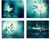 Photo Set of 4 Photographs, 11x14, 8x10, 5x7 print set dark teal aqua blue turquoise nature photography botanical gallery wall art set