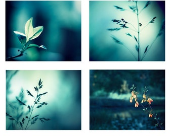 Photo Set of 4 Photographs, 11x14, 8x10, 5x7 print set dark teal aqua blue turquoise nature photography botanical gallery wall art set