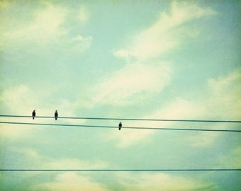 "Bird on wire photography - mint green teal turquoise print baby nursery wall art white cream - 11x14, 8x10 Photograph, ""The Sky's The Limit"""