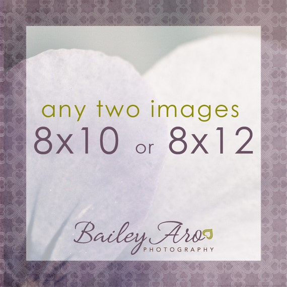 Your Choice - Any Two Images 8x10 or 8x12