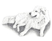 Custom Pencil Portrait  - 3 to 4 people or pets