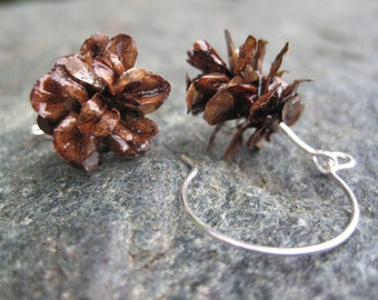 SALE - Natural Brown Color Hemlock Evergreen Eco-Friendly Woodland Pine Cone Drop Earrings