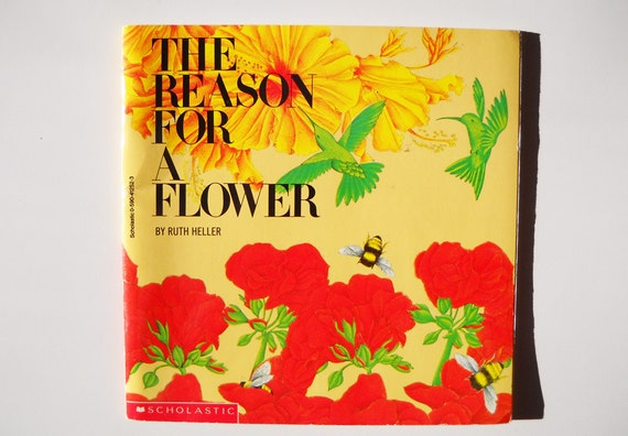 CLEARANCE 1980s Kids Science Book: The Reason for a Flower Beautiful Illustrations