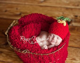 Apple Beanie Baby Crocheted Hat  Photography Prop Newborn 0-3 months 3-6 months