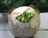 Little Sphere Rocky Garden