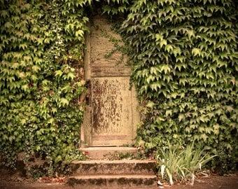 Wonderland Door 12x16