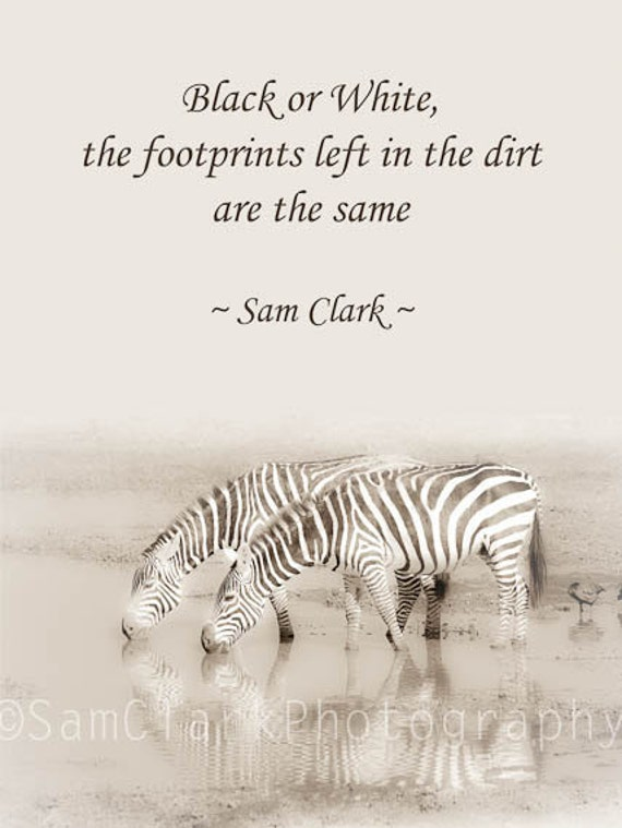 Items Similar To Zebra Photograph Quote Wall Art