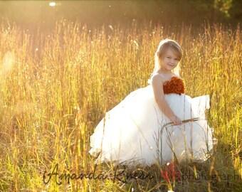 tutu dress, Fall Flowergirl Tutu Dress, Autumn Orange and Ivory girls tutu dress, Thanksgiving tutu