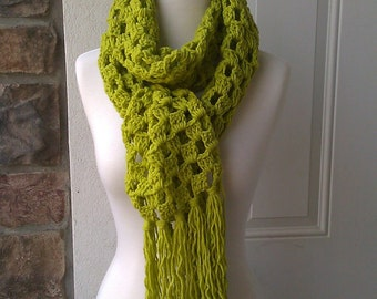 Granny Square Stitch Long Scarf - Grass
