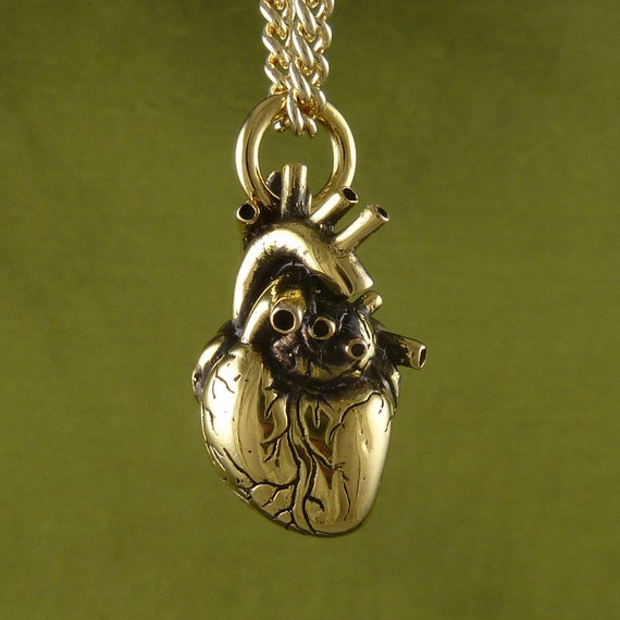 "Anatomical Heart Necklace 24 Karat Gold Plated Bronze Heart Pendant on 24 "" Gold Plated Chain"