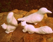 Set of 3 Miniature Garden Creatures - Perfect For Your Terrarium