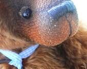 Tyran - One of A Kind Mohair Artist Teddy Bear