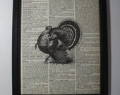 Turkey  Art Print ... On Recycled Dictionary Page  ... 8x10 ... Framed ... Item No. A141
