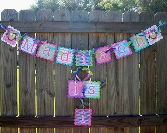 Owl (Pink, Purple, Lime, Bright Blue) Birthday Name and Age Banner