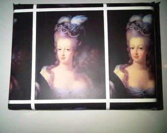 Marie Antoinette Wrapping Paper/Gift Wrap