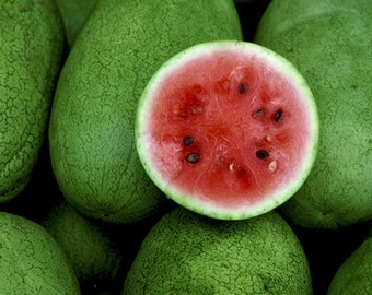 Watermelons, a full-frame photo on 8x10