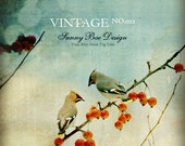 Vintage Etsy Shop Banner Set - Birds On A Tree Branch Etsy Shop Design Package