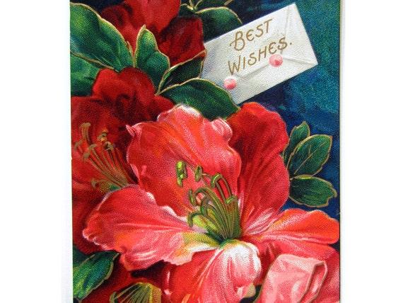 Vintage Victorian Hibiscus Flower Best Wishes Embossed Postcard