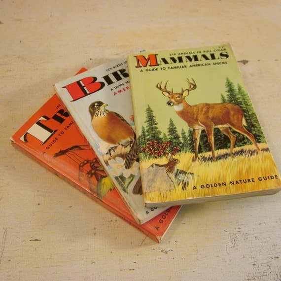 Vintage Nature Guide Collection