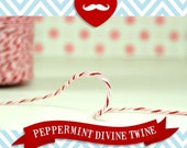 Peppermint Divine Twine 10 Yards